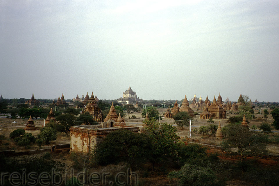 Old Bagan viewed from Mingalazedi