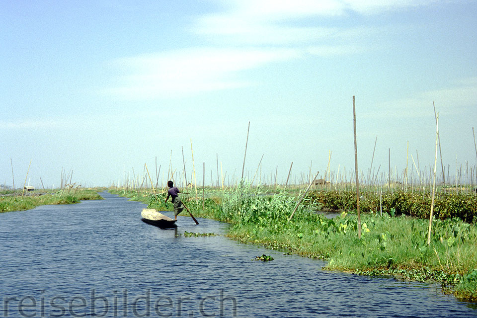 Leg rower in the floating garden on the Inle Lake