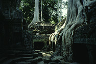 Angkor: Ta Prohm, the temple left to the jungle